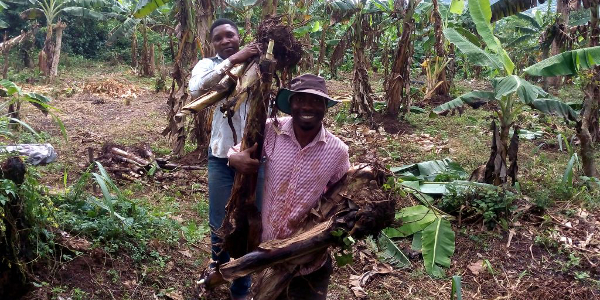 Pourquoi ce nigérian a choisi l'agriculture rurale plutôt qu'un costume et une cravate en ville?